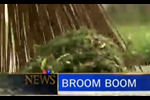 Broom Boom: CTV news coverage of the Original Garden Broom
